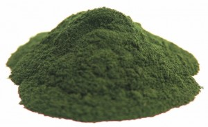 Picture of Chlorella Powder