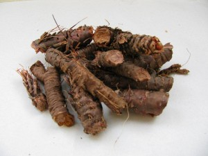 Dried Rhodiola Rosea Root