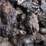 Picture of Shilajit