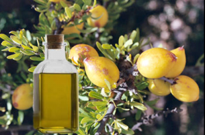 Picture of Argan Oil