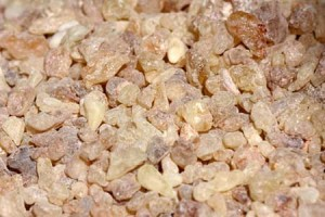 Picture of Boswellia Serrata Resin