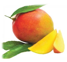 Picture of  African Mango
